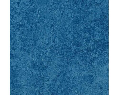 Натуральная плитка Marmoleum Modular Colour t3030 blue