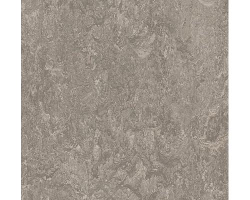 Натуральная плитка Marmoleum Modular Marble t3146 serene grey