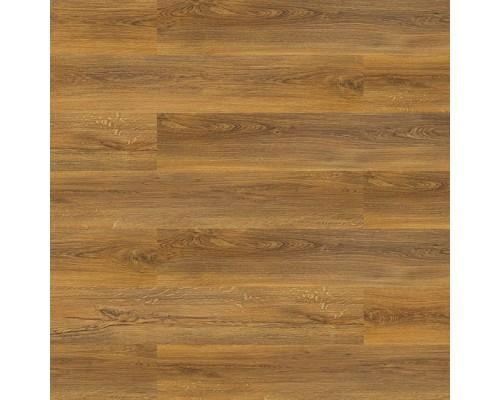 Напольная пробка клеевая Wicanders B5L8001 Sylvan Gold Oak