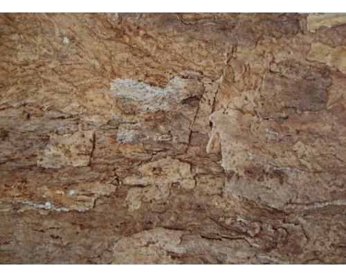 Настенная кора Amorim Сameleon