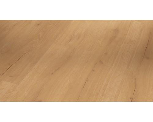 Виниловая плитка Parador Basic 2.0 1730799 Oak Infinity natural